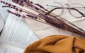 Картинка стиль, очки, книга, лаванда