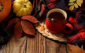 Обои осень, листья, фон, доски, colorful, тыква, клен, wood, background, autumn, leaves, cup, осенние, tea, pumpkin, ...