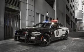 Картинка машина, здание, 911, Dodge, бампер, Charger, колёса, Dodge Charger, Police Interceptor, мигалки, police car, полицейская …