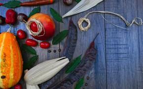 Картинка тыква, овощи, осень настроение