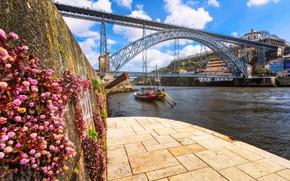 Обои стена, мост, цветы