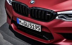 Картинка BMW, передок, 2017, M5, F90, M5 First Edition