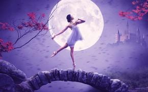 Картинка девушка, поза, замок, луна, балерина