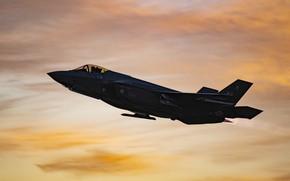 Картинка ВВС США, истребитель-бомбардировщик, F-35A
