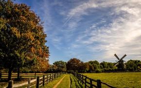Картинка поле, осень, солнце, деревья, мельница, изгородь