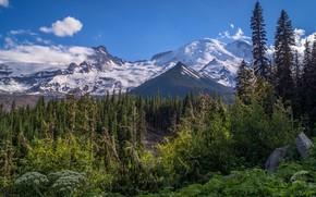 Картинка пейзаж, горы, природа, красота