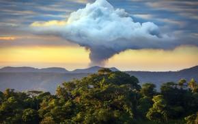 Картинка Vanuatu, Lomwanapiep, Tafea Province