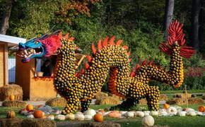 Картинка фото, дракон, Германия, тыква, фестиваль