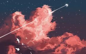 Картинка небо, звезды, птицы, срела