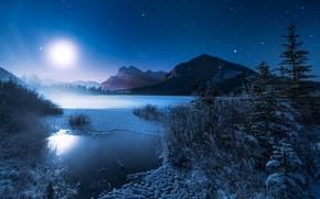 Картинка зима, горы, ночь, озеро, луна, ели, мороз, Канада, Альберта, Banff National Park, Alberta, Canada, кусты, …