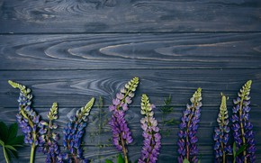 Картинка цветы, фон, wood, flowers, purple, люпины, lupine