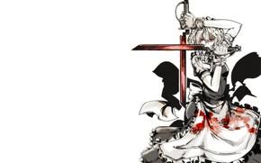 Картинка взгляд, девушка, оружие, меч, Hellsing, Touhou, Хелсинг, Тоухоу