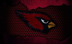 Картинка wallpaper, sport, logo, NFL, american football, Arizona Cardinals