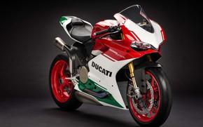 Картинка Ducati, motorbike, Ducati 1299 Panigale R Final Edition