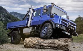 Картинка синий, Mercedes-Benz, грузовик, бревно, Unimog, U4023