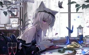 Картинка Цветы, Девушка, Комната, Ушки, mikisai