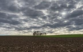 Картинка поле, природа, пашня