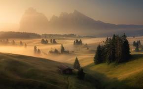 Картинка forest, village, dolomiti, Alpe di Siusi