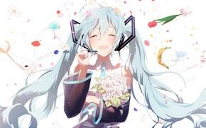 Картинка vocaloid, hatsune miku, sena tea29