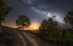 Картинка небо, деревья, ночь, млечный путь, Ole Henrik Skjelstad