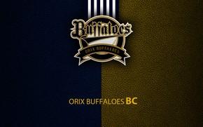 Картинка wallpaper, sport, logo, baseball, Orix Buffaloes