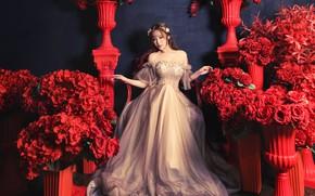 Картинка цветы, поза, красные, наряд, розы, девушка, вазоны, сидит, фотосессия, платье, азиатка