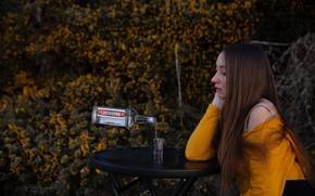 Картинка девушка, бутылка, стопка, водка, Lichon, запой