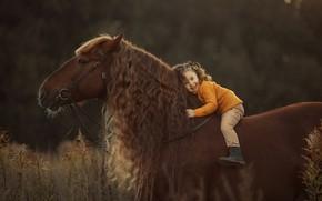 Картинка конь, лошадь, грива, девочка, кудряшки