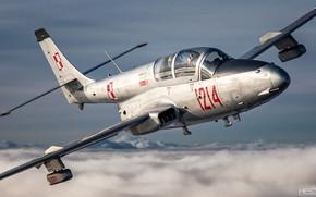 Картинка ВВС Польши, Учебно-тренировочный самолёт, PZL TS-11 Iskra, HESJA Air-Art Photography