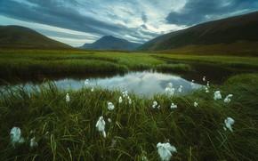 Картинка трава, пейзаж, горы, тучи, природа, озеро, тундра, берега, Урал, пушица, Оборотов Алексей