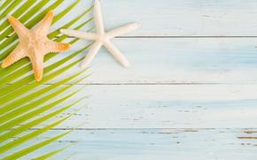 Картинка пляж, лето, доски, звезда, summer, beach, wood, starfish