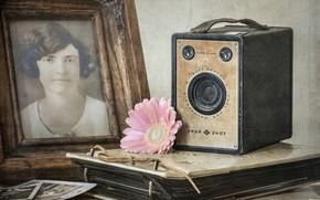 Картинка цветок, фото, камера