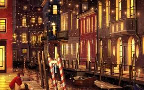 Картинка кошка, вода, снег, город, вечер, девочка