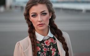 Картинка взгляд, девушка, лицо, фон, портрет, косы, Дмитрий Шульгин, Диана Чмелева