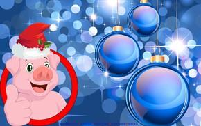 Картинка шапка, свинья, поросенок, календарь на 2019 год