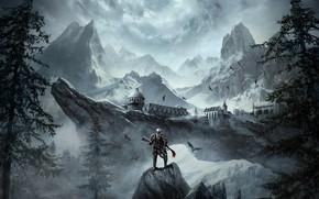 Картинка пейзаж, природа, Воин, The Elder Scrolls Online