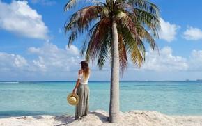 Картинка девушка, пальма, океан, шляпка