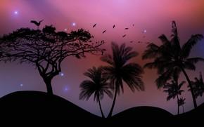 Картинка птицы, пальмы, пустыня