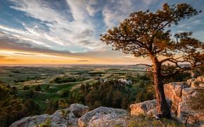 Картинка облака, свет, пейзаж, ветки, природа, камни, дерево, скалы, холмы, вид, поля, высота, даль, равнина, утро, …