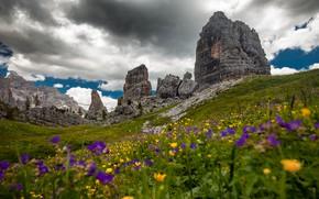 Картинка зелень, лето, облака, цветы, горы, тучи, камни, скалы, склоны, желтые, Альпы, сиреневые, лютики, Доломиты, хмурое …