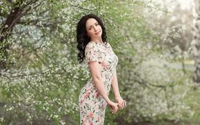 Картинка dress, tree, brunette, pose, Георгий Дьяков
