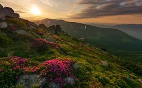 Картинка пейзаж, закат, горы, природа, камни, холмы, растительность, склоны, Украина