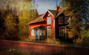 Картинка лес, свет, деревья, ветки, дом, парк, забор, вид, окна, ограждение, красиво, особняк, яркие цвета