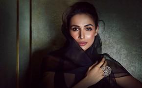 Картинка hot, bollywood, jewelery, indian actress, Malaika arora