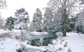Картинка зима, снег, пейзаж, природа, озеро, красота, домик, островок