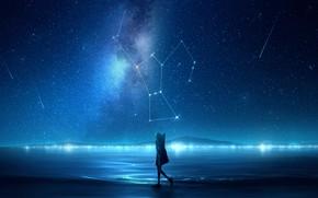 Картинка море, девушка, ночь, созвездия