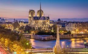 Картинка деревья, ночь, огни, река, Франция, Париж, дома, выдержка, фонари, Сена, Paris, river, night, France, Нотр-Дам …