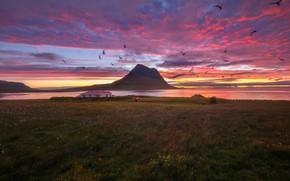 Картинка небо, облака, закат, горы, дом, лошадь, чайки, Андрей Базанов