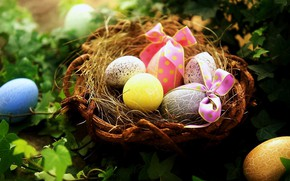 Картинка макро, яйца, растения, Пасха, гнездо, бантики, крашенные яйца