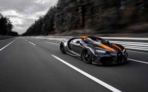 Картинка асфальт, деревья, скорость, Bugatti, трек, гиперкар, Chiron, Super Sport 300+